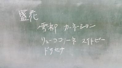 20160201_193510.jpg