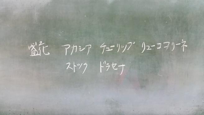 20160222_192905.jpg